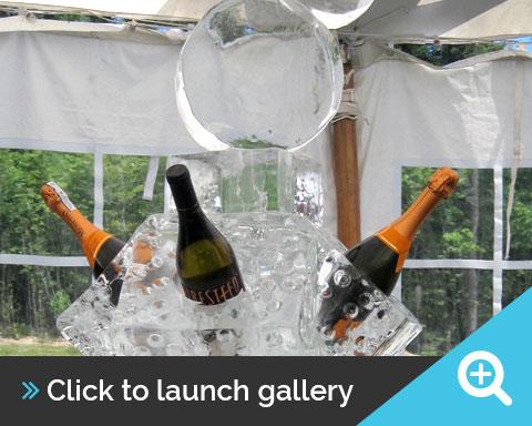 Ice Wine Racks